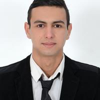 Houssam N.