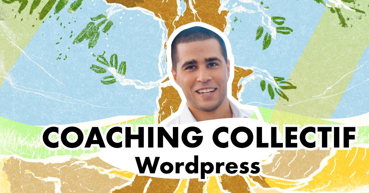 Tribu raphael wordpress